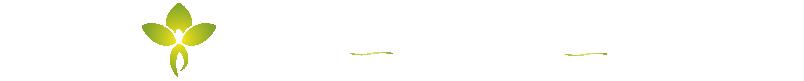 Naturheilpraxis Lebensenergie Logo